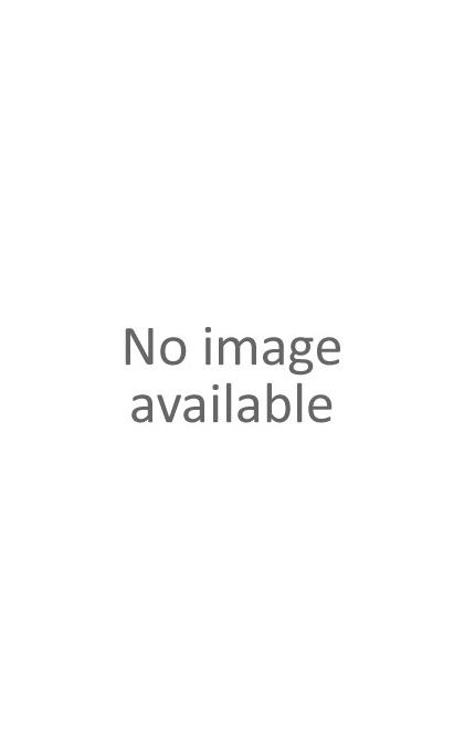Twingo III (2014-2018)